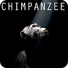 watch Chimpanzee