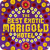 watch The Best Exotic Marigold Hotel