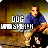 Dog Whisperer full episodes