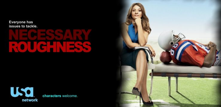 watch Necessary Roughness