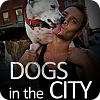 Dogs in the City online